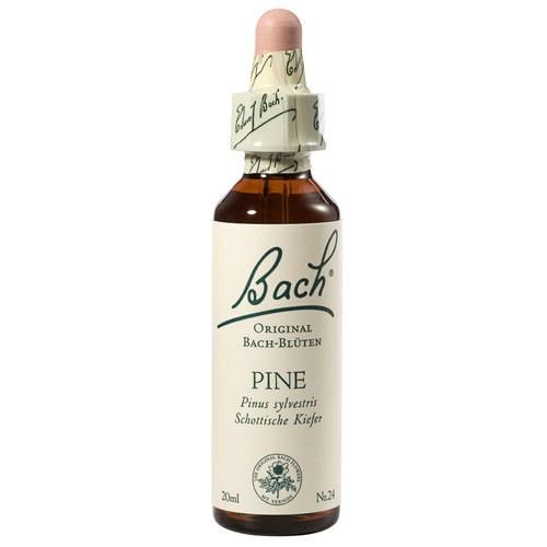 Bachblüten Nr. 24 Pine (20 ml)