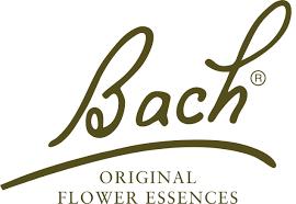 Fa. Nelson Bach