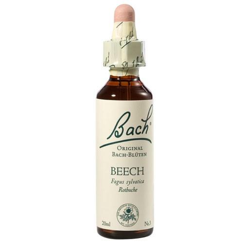 Bachblüten Nr. 3 Beech (20 ml)
