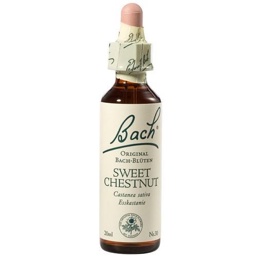 Bachblüten Nr. 30 Sweet Chestnut (20 ml)